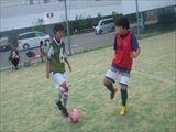 RIMG3946_R.JPG